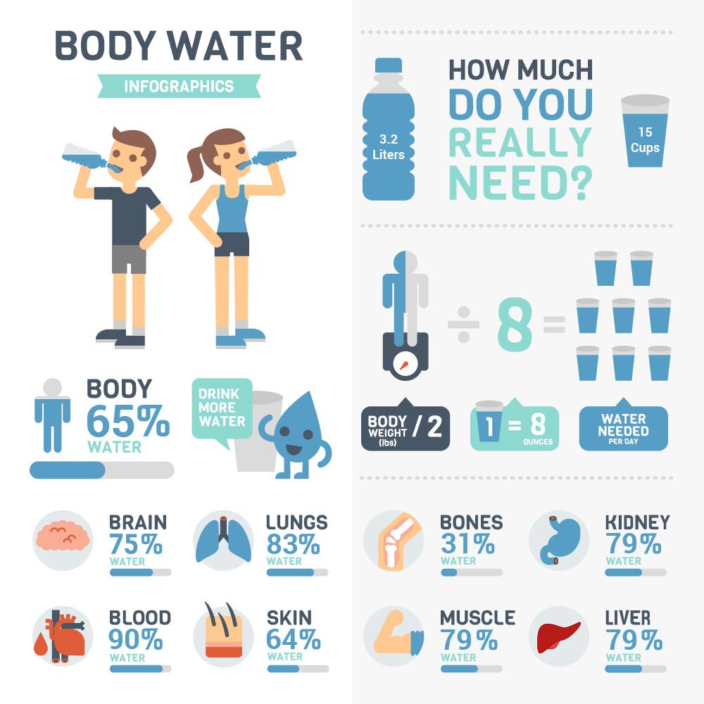 Info-Body_Water